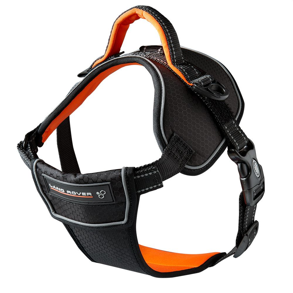 Above and Beyond Dog Harness